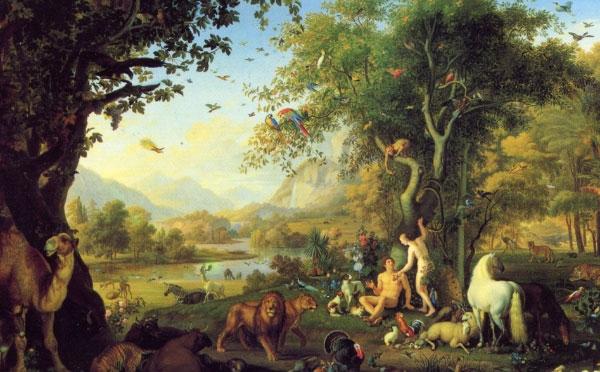Ставлення християн до тварин і яким воно має бути?